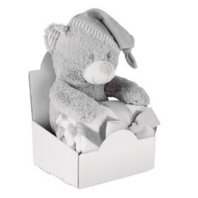 Grote teddybeer met deken