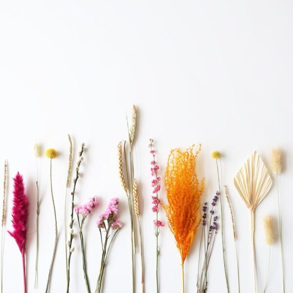 BloomPosy droogbloemen