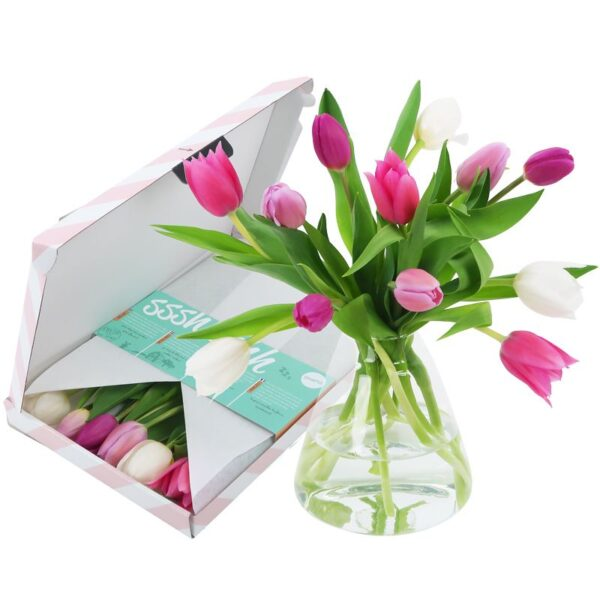 Tulpen Pastel brievenbusbloemen