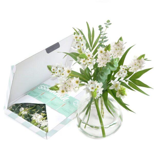 White Wonder brievenbusbloemen